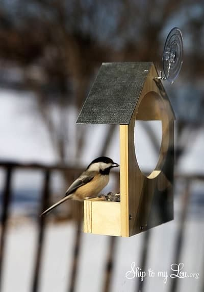 DIY Wooden Bird Feeder